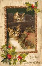 cat300233