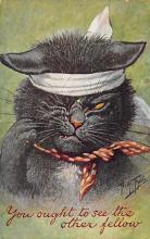 cat300241