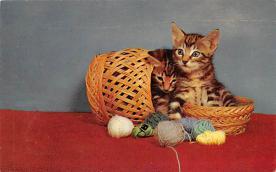 cat300251