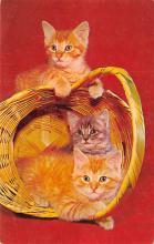 cat300269