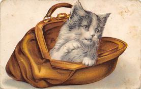 cat300287
