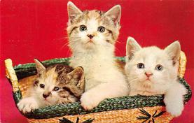 cat300297
