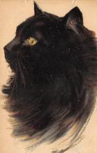cat300311