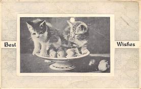 cat300315