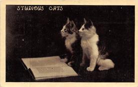 cat300321
