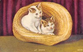 cat300387