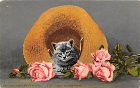 cat300393