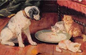 cat300433