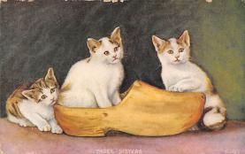cat300439
