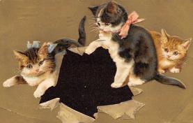 cat300441