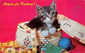 cat300445