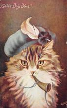 cat300447