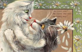 cat300451