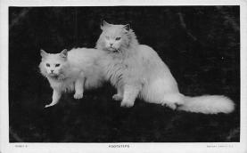 cat300481