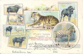 cir001003 - Barnum & Bailey Circus Postcard Post Card