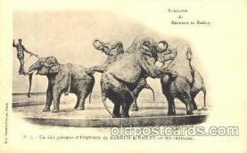 cir001010 - Barnum & Bailey circus Elephant postcard Post Card