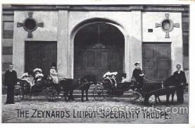 Zeynards Midgets