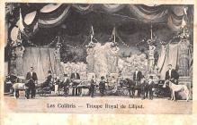 cir003287 - Circus Post Card, Old Vintage Antique Postcard