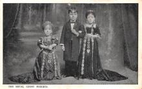 cir003319 - Circus Post Card, Old Vintage Antique Postcard