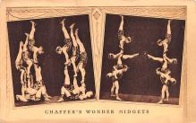cir003321 - Circus Post Card, Old Vintage Antique Postcard