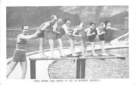 cir003383 - Circus Post Card, Old Vintage Antique Postcard