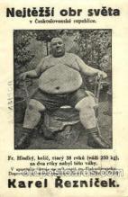 Karel Reznicek