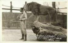 cir006008 - Mr. Gary & Pluto Gay's Lion Farm El, Monte, California, USA Circus Postcard Post Card