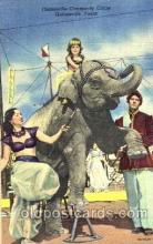 cir006040 - Gainesville Community Circus Gainesville, Texas USA Elephant postcard Post Card