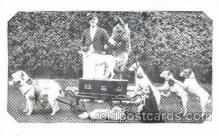 cir006055 - Watson's Fox Terrier Dogs postcard Post Card