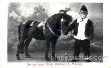 cir006058 - Pony postcard Post Card