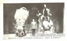 Broncho Bills Elephants