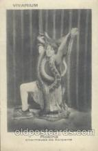 cir006086 - Circus Postcard Post Card Rosina