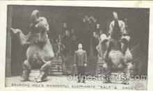 cir006138 - Circus Postcard Post Card Broncho Bill Elephants