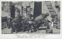 cir006141 - Circus Postcard Post Card Franco - British Exposition