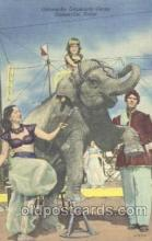cir006145 - Circus Postcard Post Card Gainesville, Texes, USA Circus