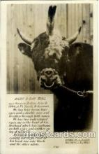 cir006146 - 4 Horn Bull Bull with 4 horns, Postcard Post Card
