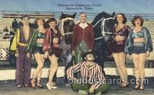 cir006166 - Gainesville Community Circus Circus Postcard Post Card