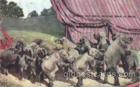 cir006178 - Barnum and Bailey Greatest Show on Earth  Circus Postcard Post Card