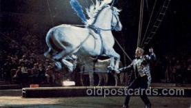 cir006192 - Kingdom of Horses Circus Postcard Post Card