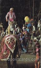 cir006220 - Gunther Gebel-Williams Ringling Bros. and Barnum & Bailey Circus Postcard Post Card