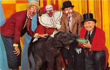 cir007113 - Circus Clown Postcards