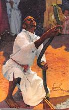 cir007271 - Maroc Le Charmeur de Serpents Circus Post Card