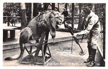cir007283 - Gay's Lion Farm, El Monte California, USA Arthur West and Bamboula, Lion Show Circus  Post Card