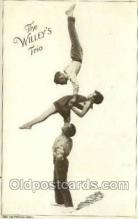 cir010001 - The Willeys Trio Circus Old Vintage Antique Postcard Post Card
