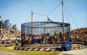 cir050001 - Sarasota Florida USA  Barnum & Bailey Circus Old Vintage Antique Post Card Postcard