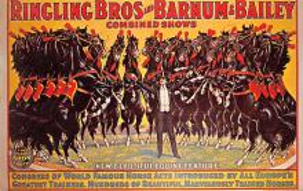 cir101041 - Circus Acts Post Cards