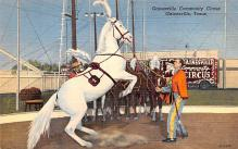 cir101103 - Circus Acts Post Cards