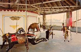 cir101131 - Circus Acts Post Cards