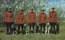 cmp001002 - Royal Canadian Mounted Police Old Vintage Antique Postcard Post Card