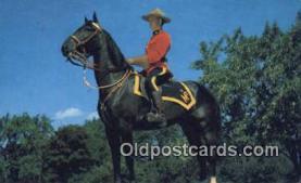 cmp001043 - Black Watch, Royal Canadian Mounted Police, Old Vintage Antique Postcard Post Card